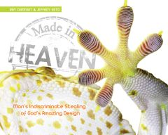Made in Heaven (Download)