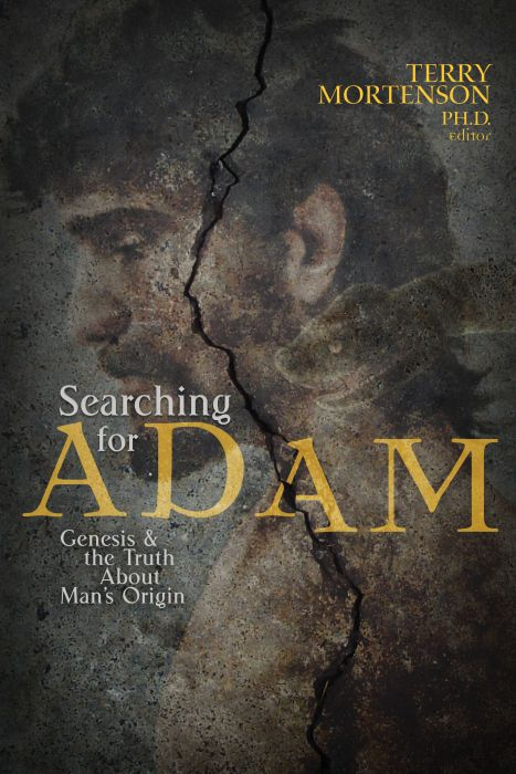 Searching for Adam (Download)