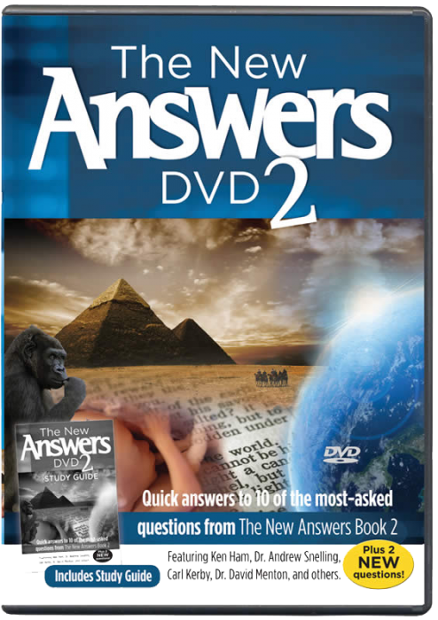 The New Answers DVD 2 (MP4 Download)