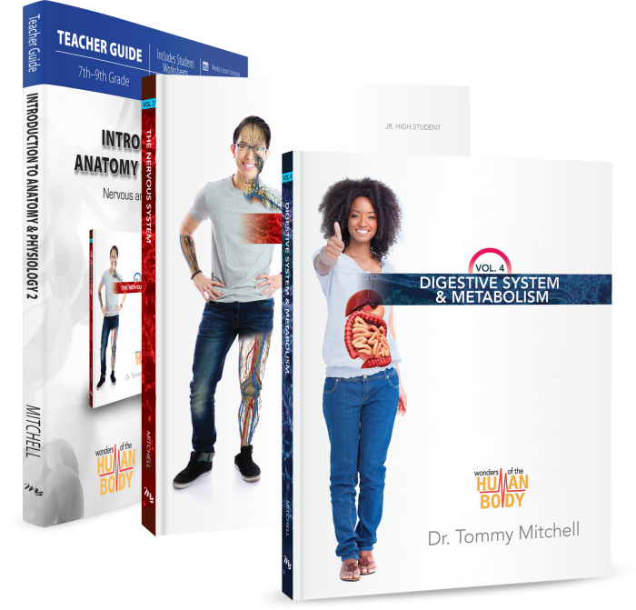Introduction to Anatomy & Physiology 2 (Curriculum Pack)
